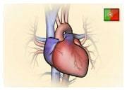 De que forma um ataque do coração pode provocar insuficiência cardíaca